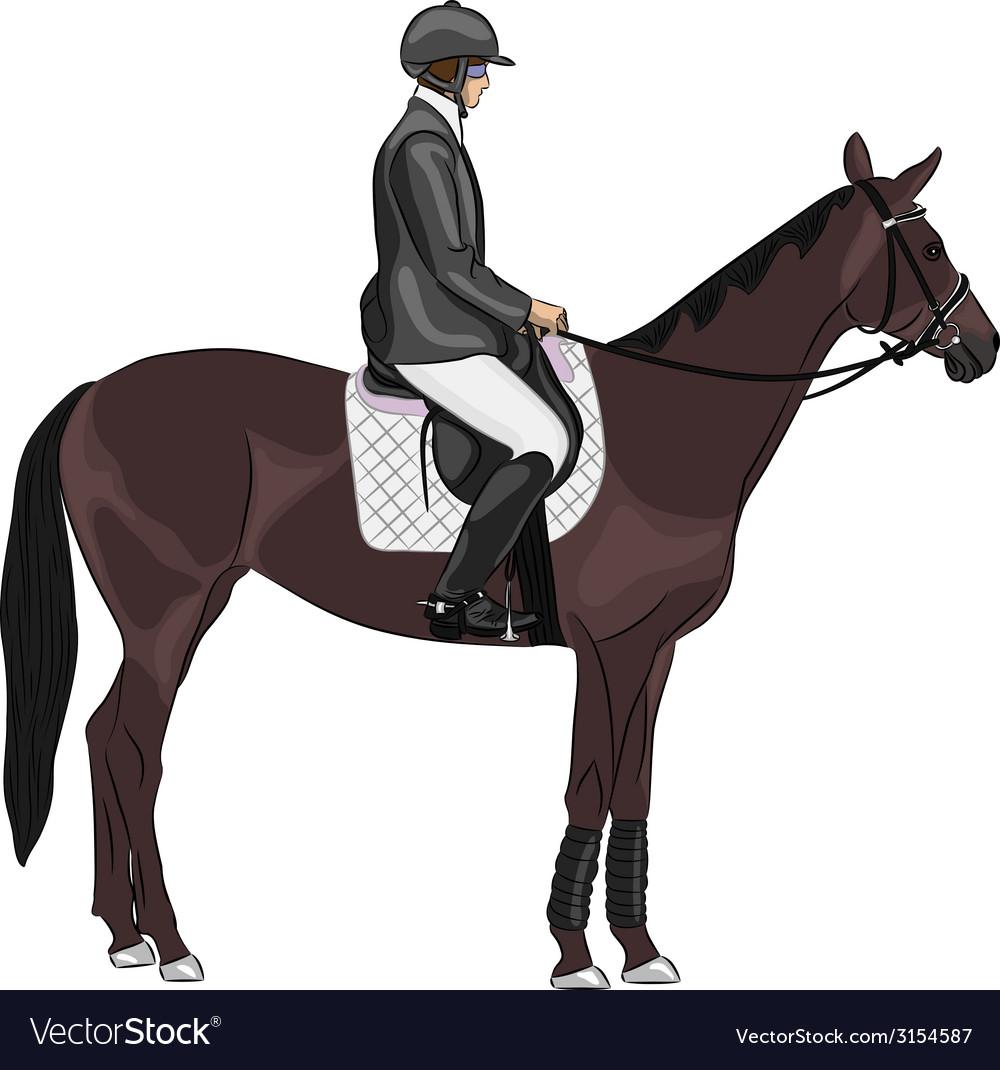 Jockey on a horse vector | Price: 1 Credit (USD $1)
