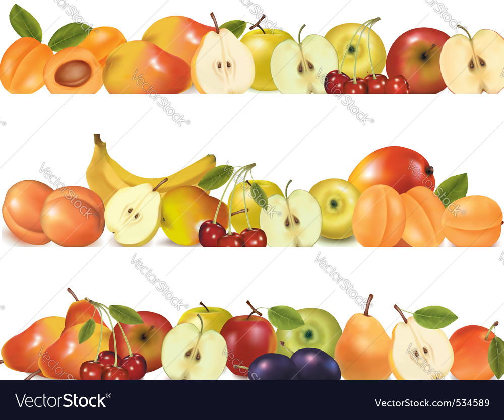 Three fruit design borders vector | Price: 5 Credit (USD $5)