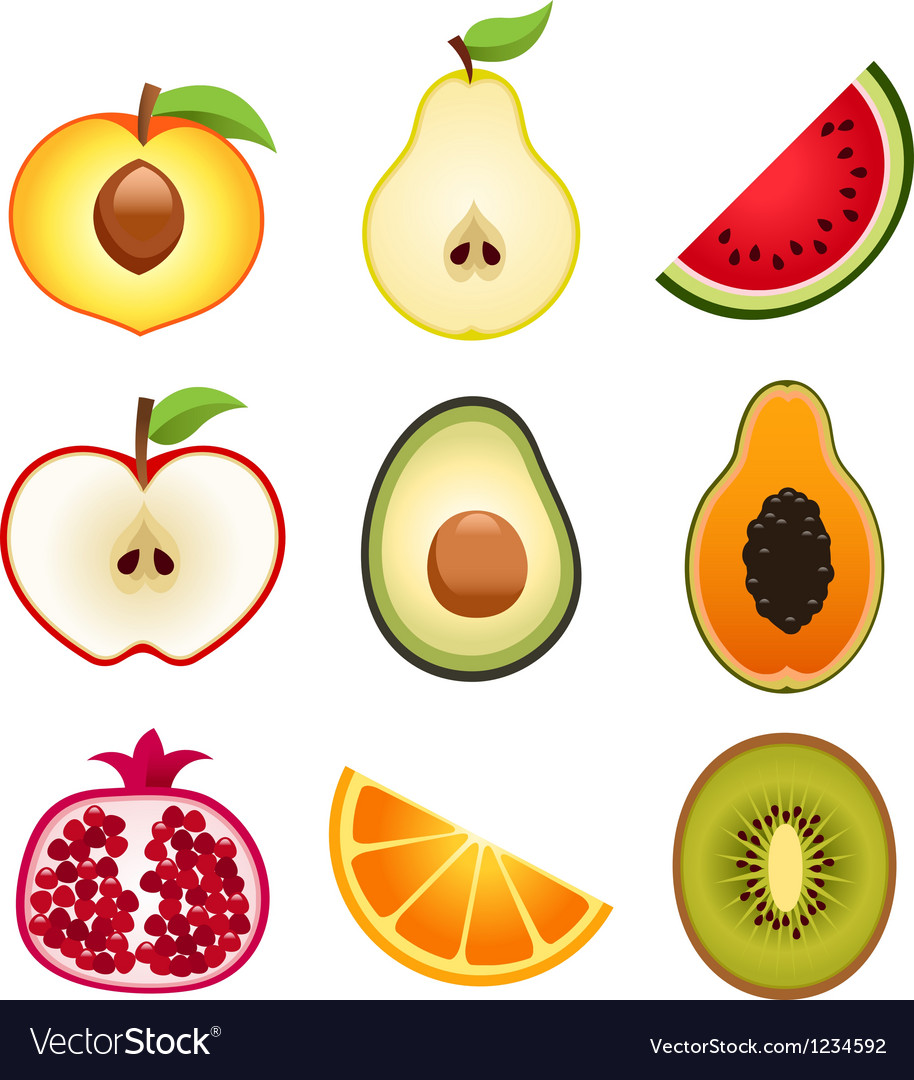 Halve fruits icons vector | Price: 1 Credit (USD $1)