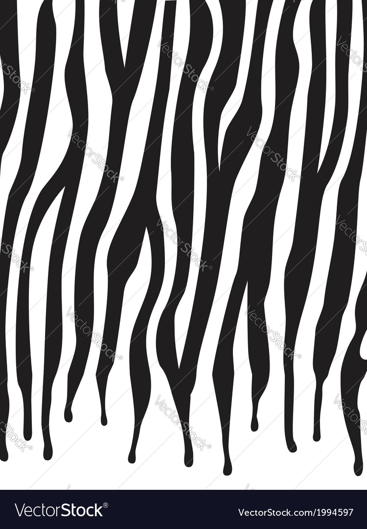 Zebra skin texture vector | Price: 1 Credit (USD $1)