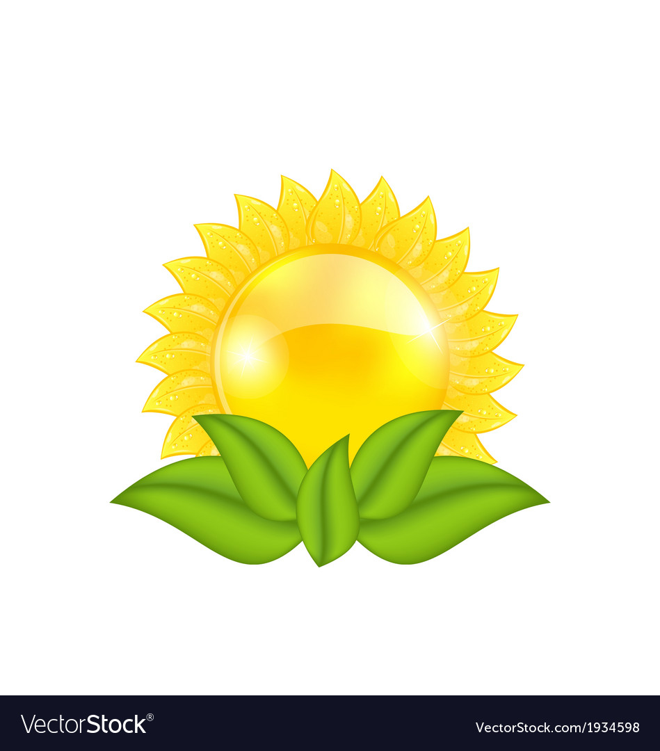 Abstract sun with green leaves isolated on white vector | Price: 1 Credit (USD $1)