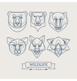 Animals linear art icons vector