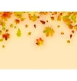 Autumn card of multicolor leafs vector