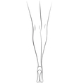 Woman legs back view vector