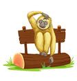 Gibbon sitting on log vector