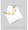 Valentine plumeria envelope vector