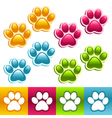 Colorful animal paws vector