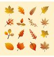 Vintage autumn season tree leaves set eps10 file vector