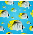 Seamless background - tropical butterflyfish vector