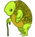 Old turtle vector