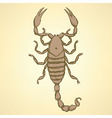 Sketch horrible scorpion in vintage style vector