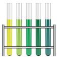 Test tubes in holder vector