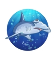 Hammerhead shark cartoon image vector