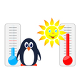Sun and penguin with thermometers vector