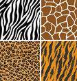 Animal set giraffe leopard tiger zebra seamless vector
