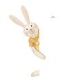 Cute rabbit hiding by blank vector