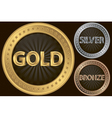 Golden silver and bronze empty coins vector