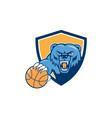 Grizzly bear angry head basketball shield cartoon vector