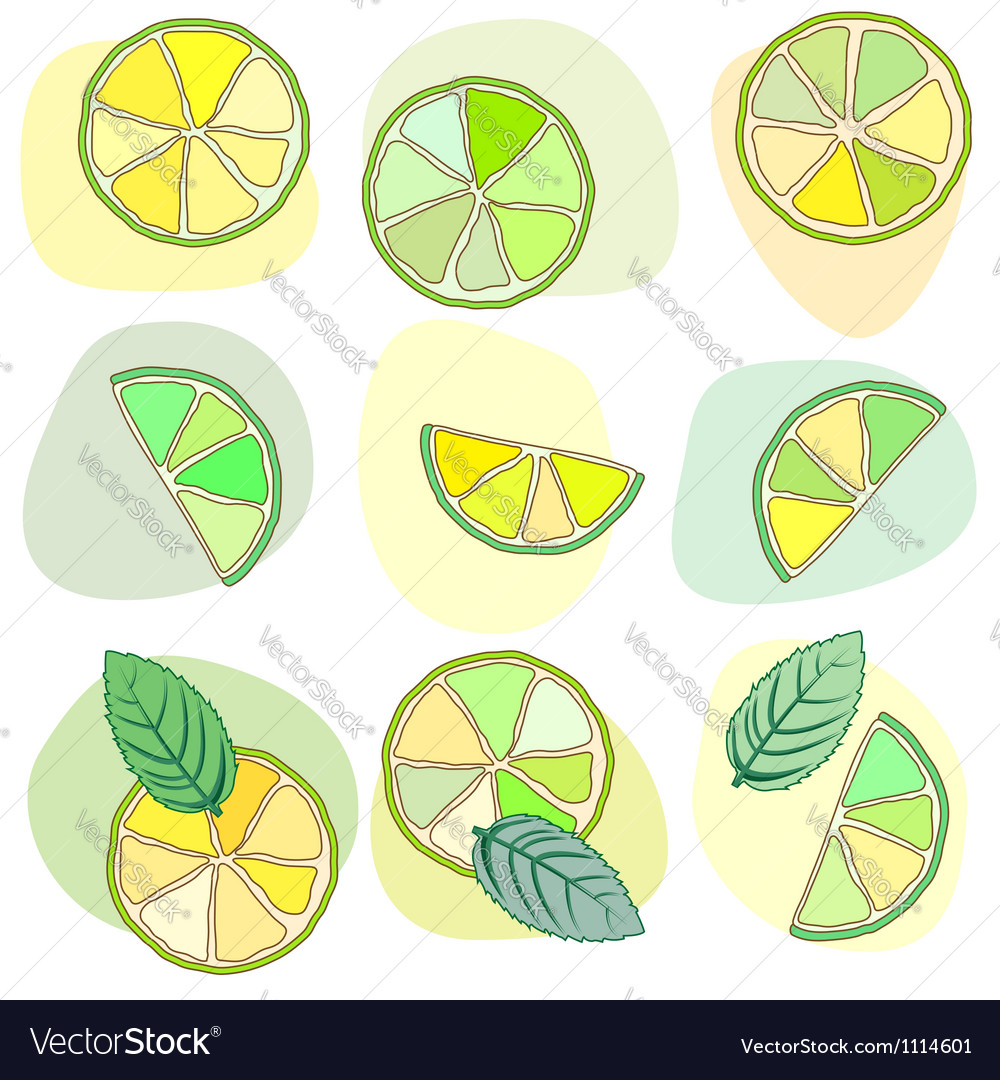 Citrus mojito pattern vector | Price: 1 Credit (USD $1)