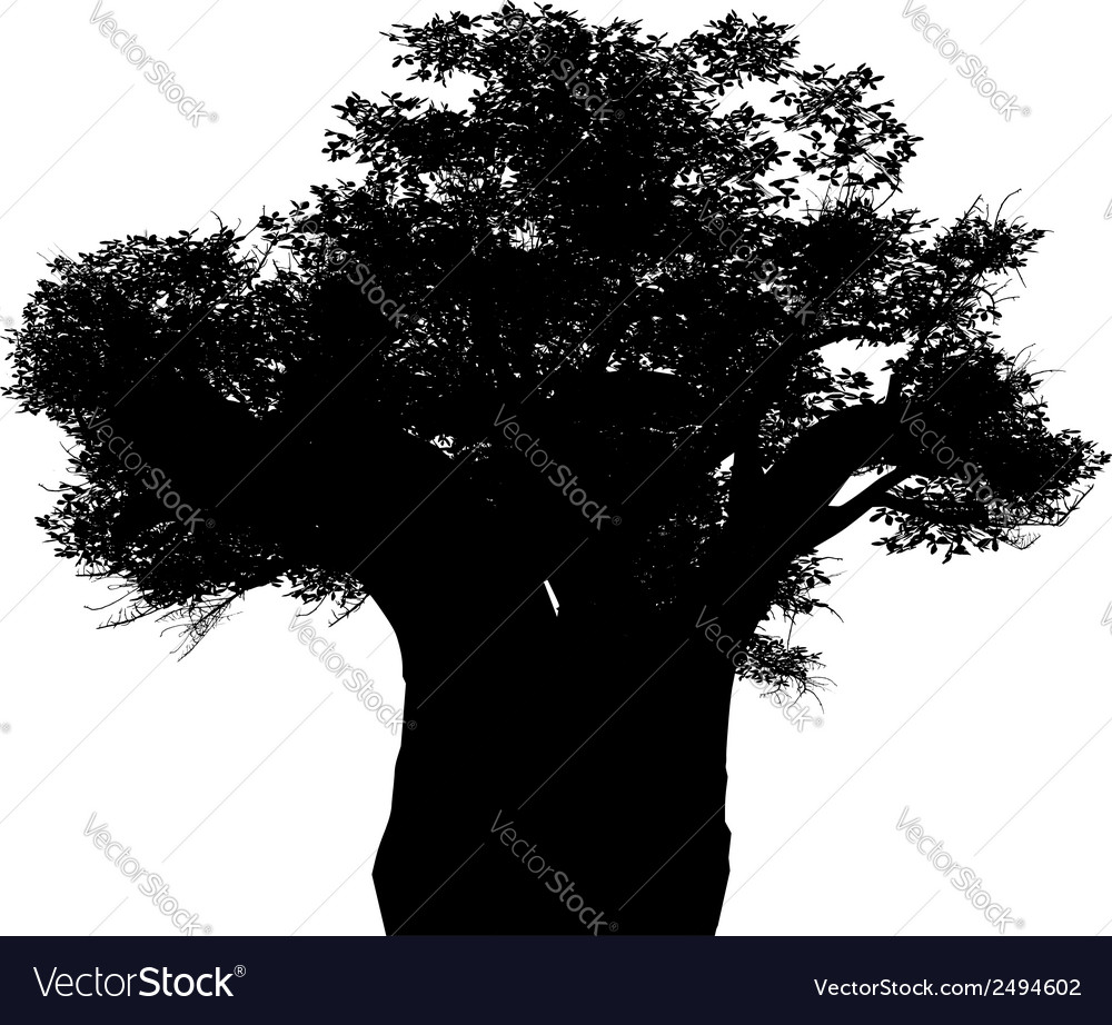 African baobab vector | Price: 1 Credit (USD $1)