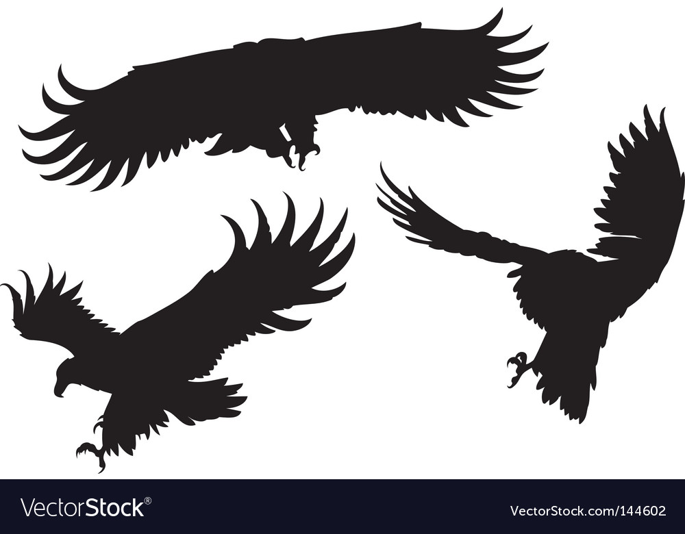 Eagles silhouettes vector | Price: 1 Credit (USD $1)