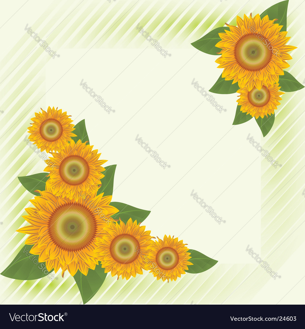 Green background with abstract sunflowers vector | Price: 1 Credit (USD $1)