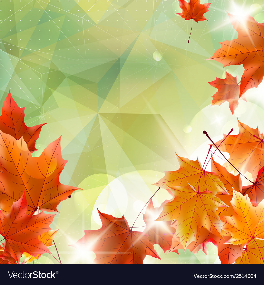 Abstract autumn with maple leaves vector   Price: 1 Credit (USD $1)
