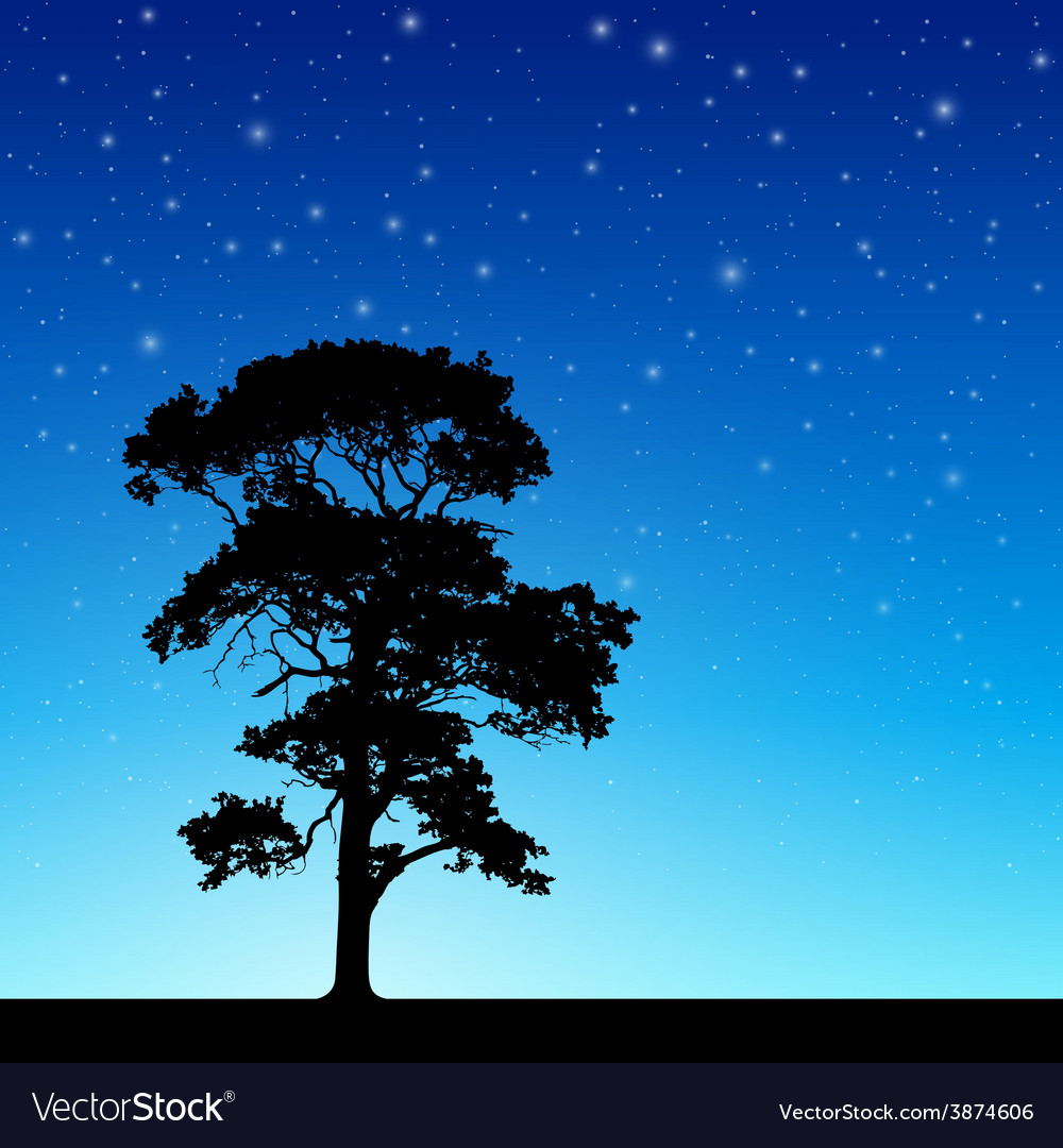 Tree with night sky vector | Price: 3 Credit (USD $3)