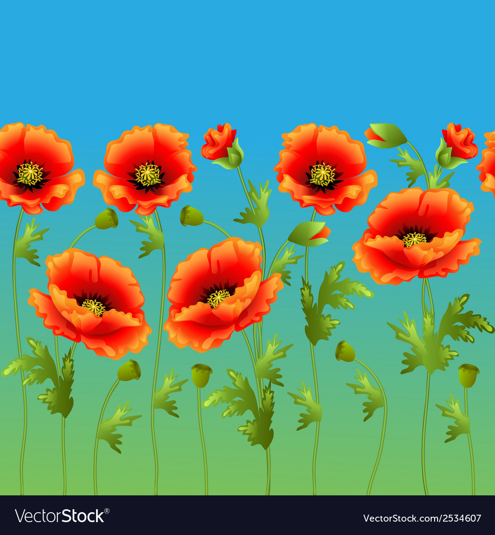 Bright background with flowers curb poppy vector | Price: 1 Credit (USD $1)