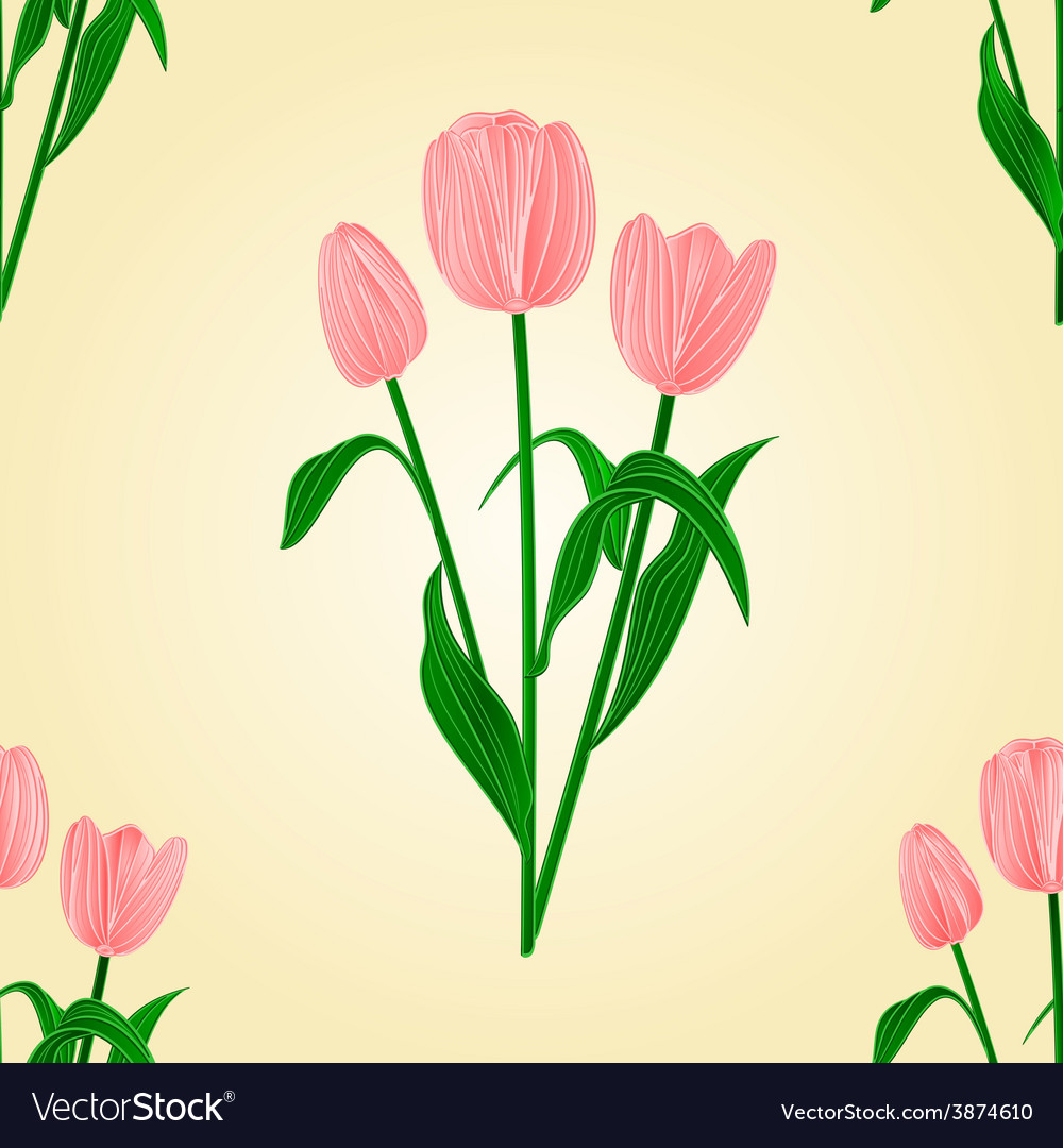 Seamless texture tulips spring background i vector | Price: 1 Credit (USD $1)