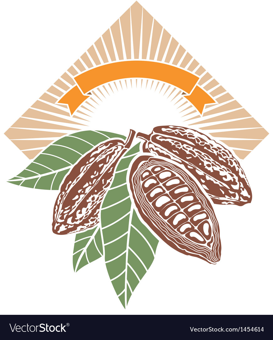 Cocoa beans vector | Price: 1 Credit (USD $1)