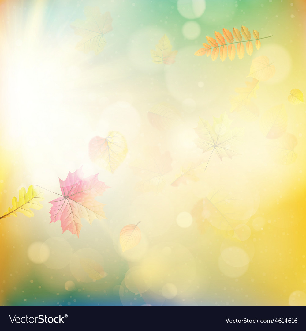 Fall leaves and light burst eps 10 vector   Price: 1 Credit (USD $1)