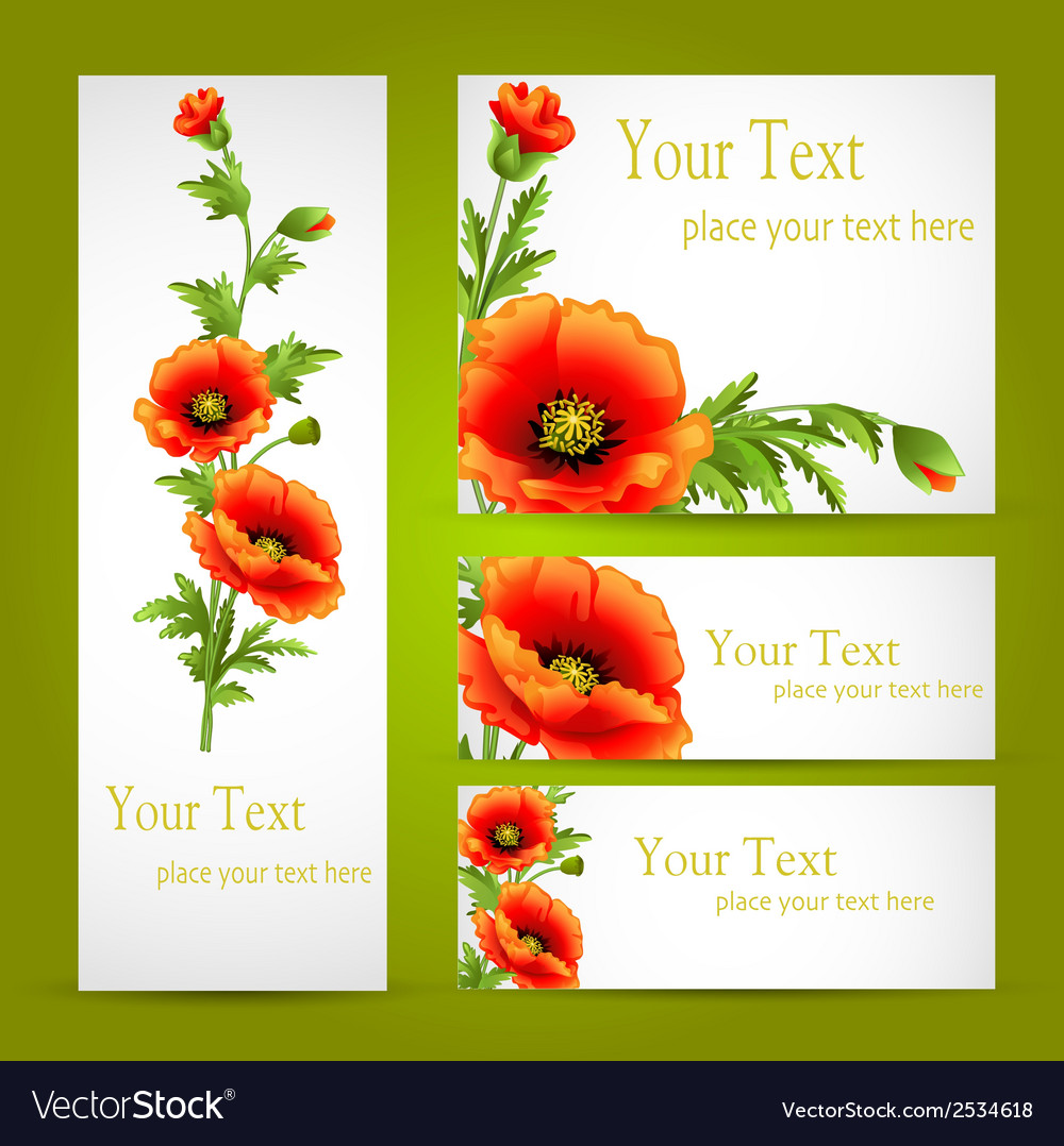 Set of cards with poppy flowers vector | Price: 1 Credit (USD $1)