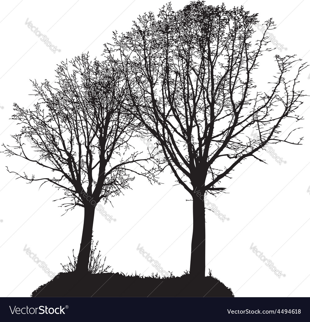Silhouette of two trees vector   Price: 1 Credit (USD $1)