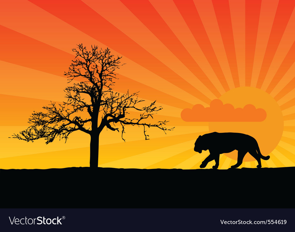 Tiger in african vector | Price: 1 Credit (USD $1)