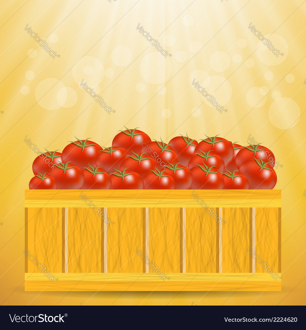 Box of tomatoes vector | Price: 1 Credit (USD $1)
