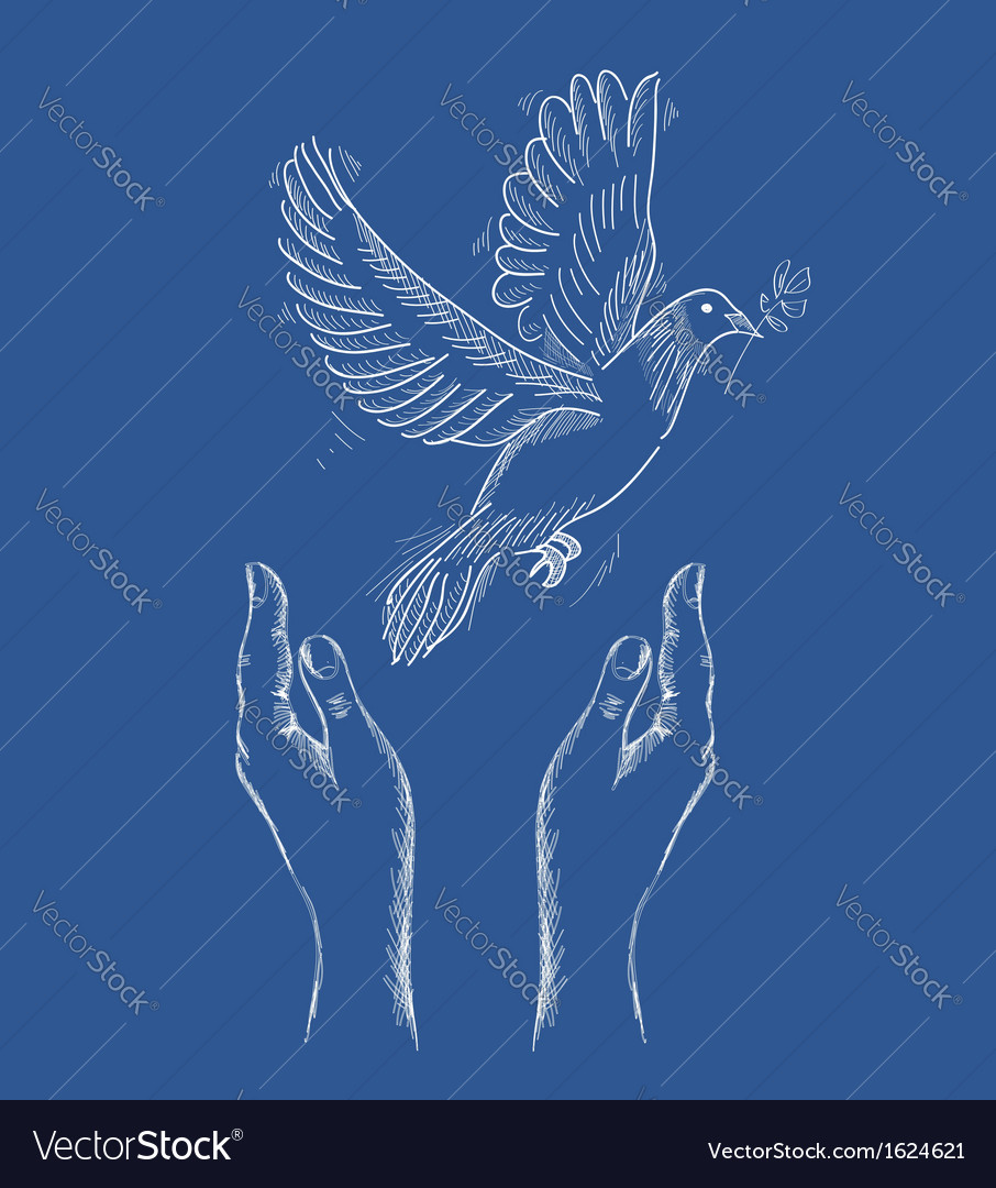Human hands and peace dove eps10 file vector | Price: 1 Credit (USD $1)