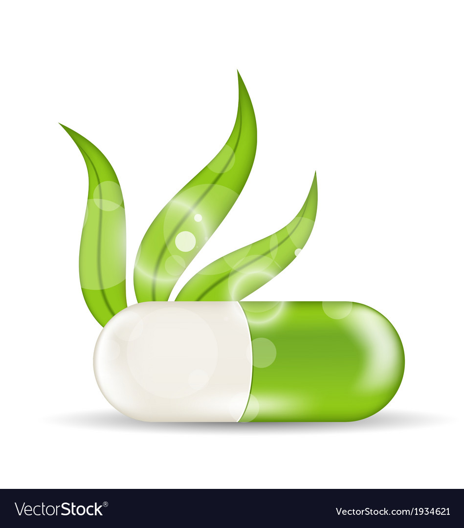 Natural medical pill with green leaves vector | Price: 1 Credit (USD $1)