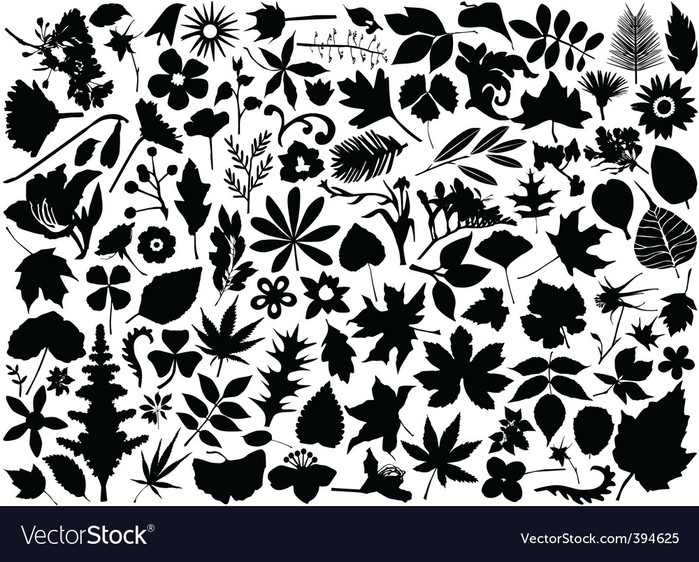 Flower and leaf set vector | Price: 1 Credit (USD $1)