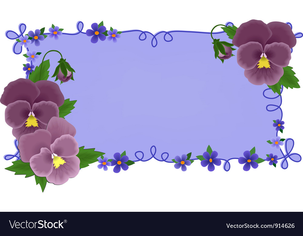 Banner or greetings card with pansies vector | Price: 1 Credit (USD $1)