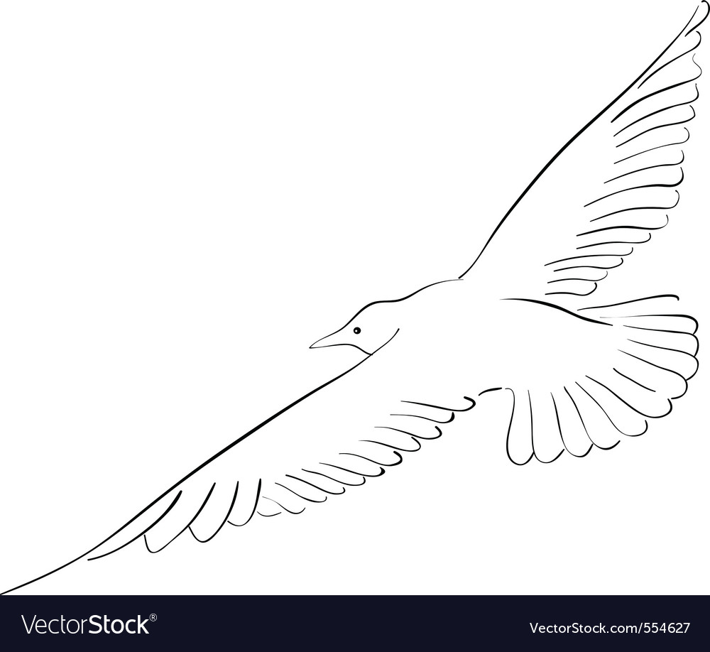 Black drawing of seagull isolated on the white vector | Price: 1 Credit (USD $1)