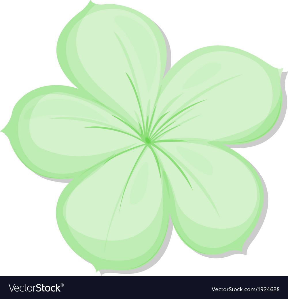 A five-petal green flower vector | Price: 3 Credit (USD $3)