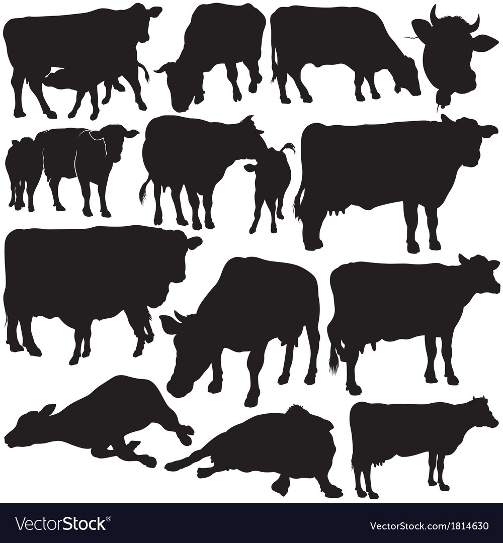 Cow silhouettes vector | Price: 1 Credit (USD $1)