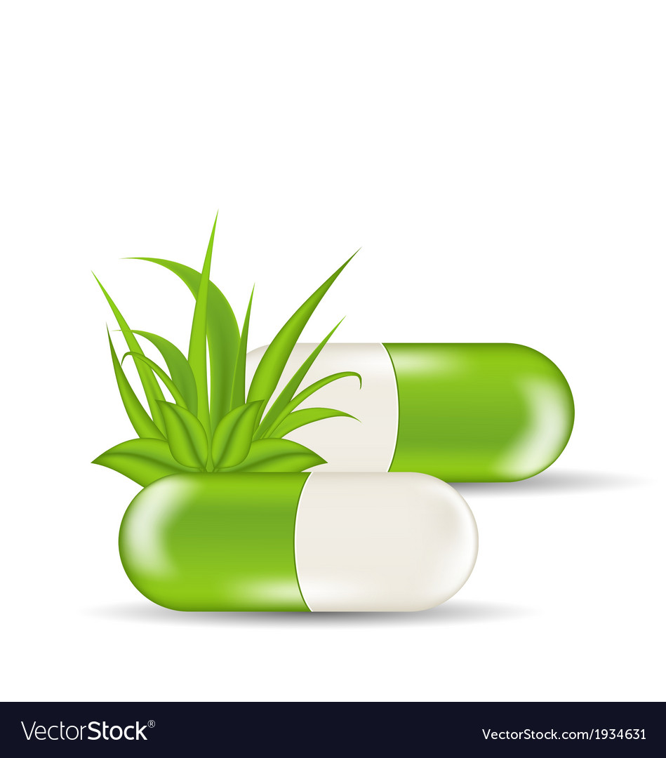 Natural medical pills with green leaves and grass vector | Price: 1 Credit (USD $1)