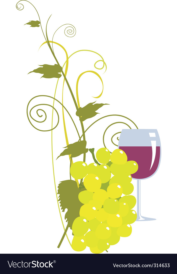 Grape and wine vector | Price: 1 Credit (USD $1)