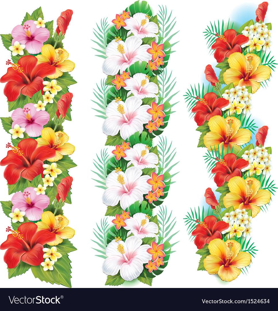 Garlands of hibiscus flowers vector