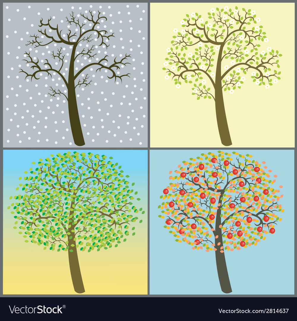 Trees collection - four seasons vector | Price: 1 Credit (USD $1)