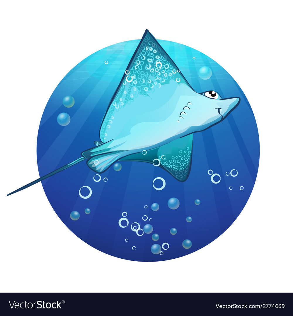 Cartoon drawing of a fish ramp vector | Price: 1 Credit (USD $1)