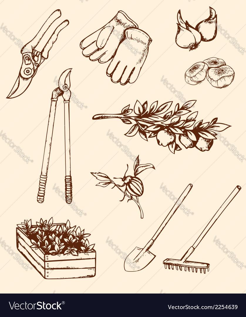 Hand drawn garden tools vector | Price: 1 Credit (USD $1)