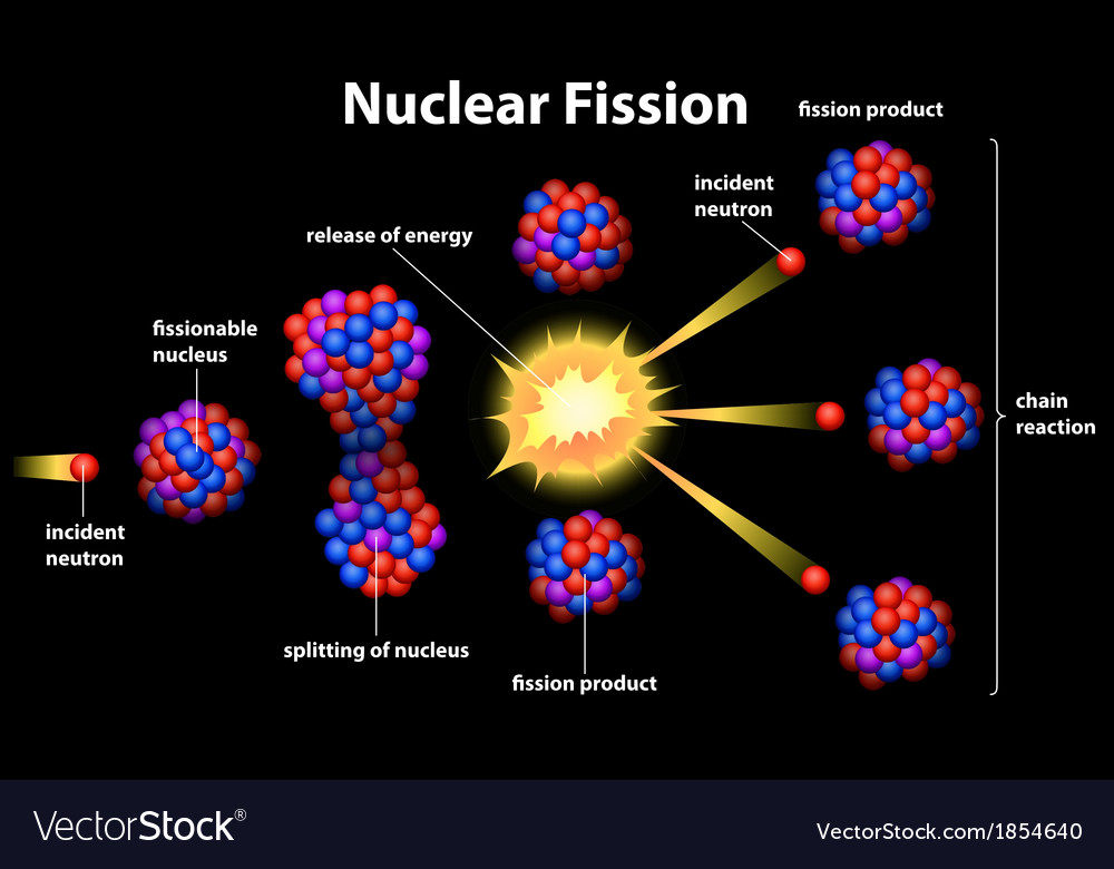 Nuclear fission vector | Price: 1 Credit (USD $1)